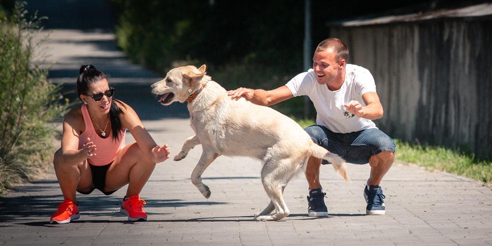 Pes Ben dovádí mezi snoubenci.