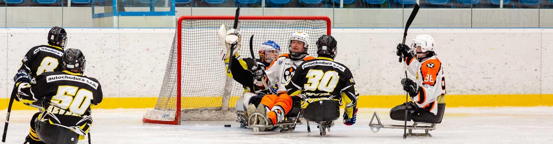 Hráči sledge hokeje dalvají gol.