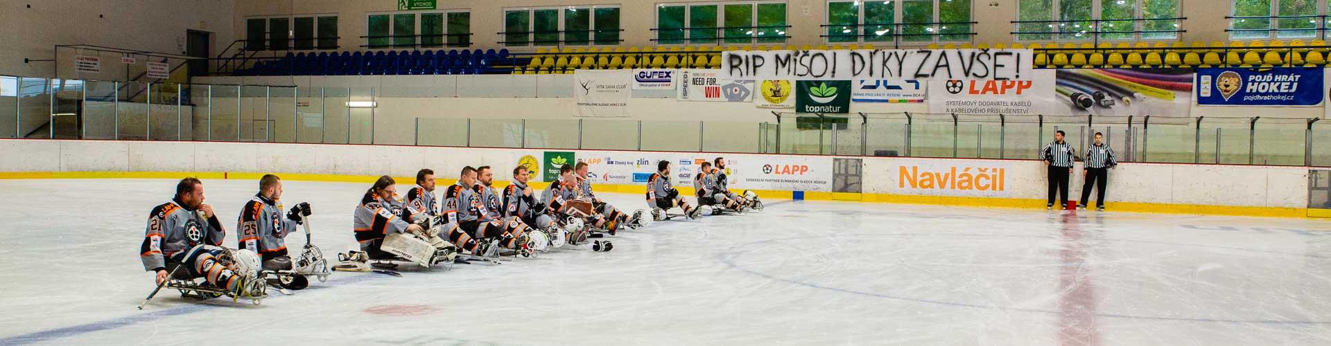 Sledge hokejisté na stadionu.